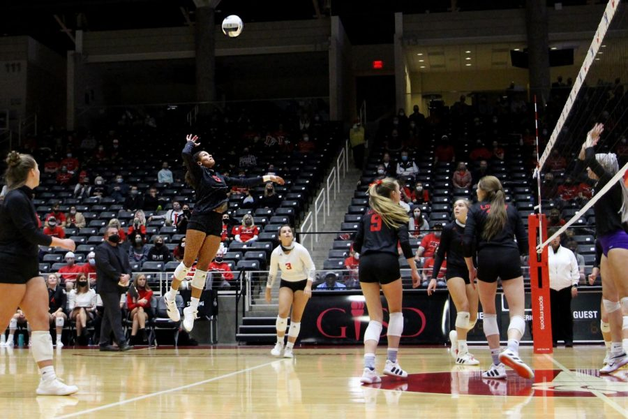 Senior Cecily Bramschreiber hits the ball from the back row. Bramschreiber's kill occurred in the first set which the Leopards won 25-14.