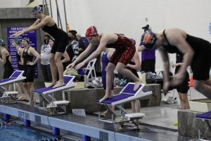 Junior Emmerson Dingwerth dives into the pool at the district meet. Dingworth was the only member of the girls swim team to qualify for state.