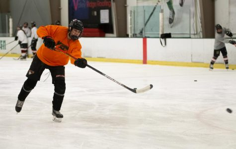 Hockey team advances to state championship