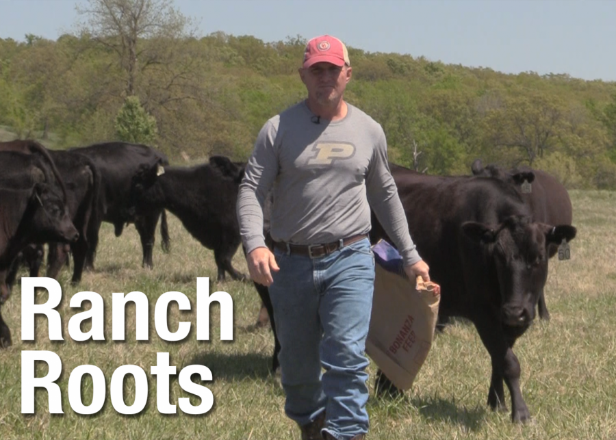 VIDEO: Ranch Roots